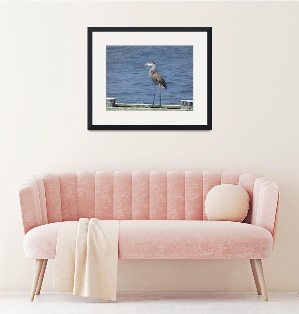 """A Heron in North Beach""  (2019) by Kimmary"