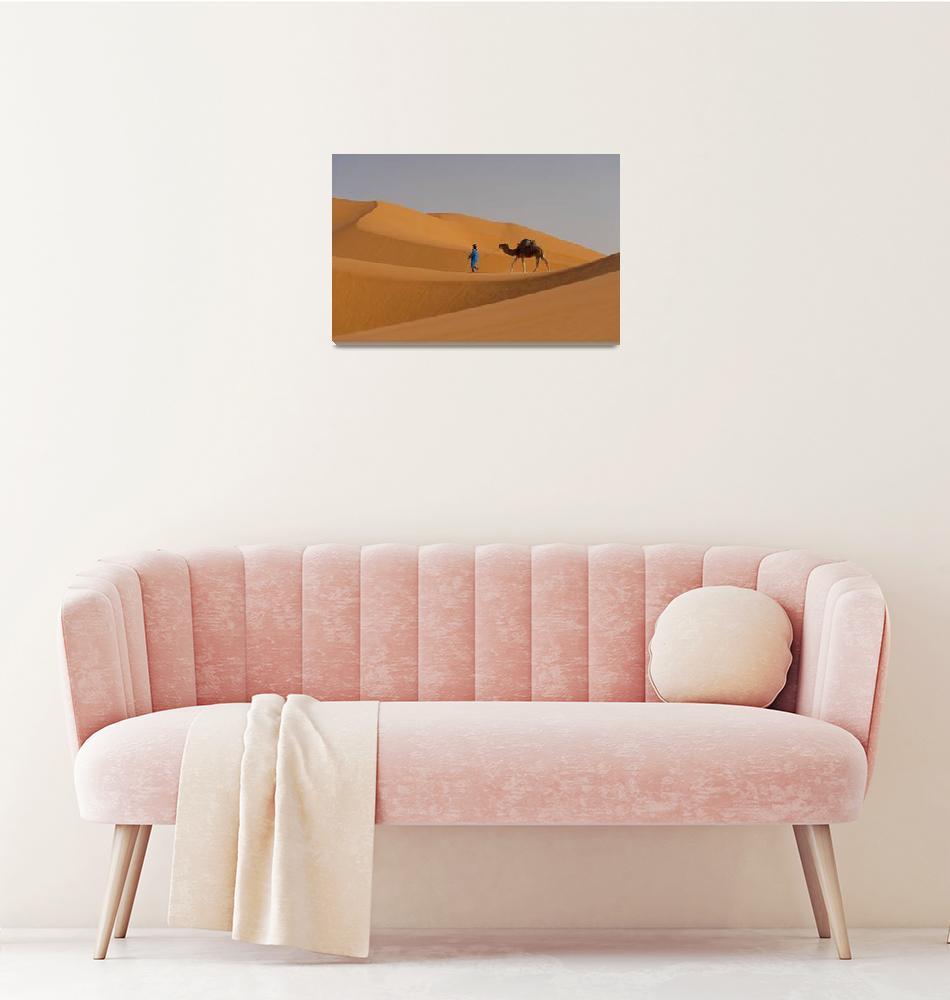 """Berber Leading A Camel The Sahara Merzouga, Moroc""  by DesignPics"