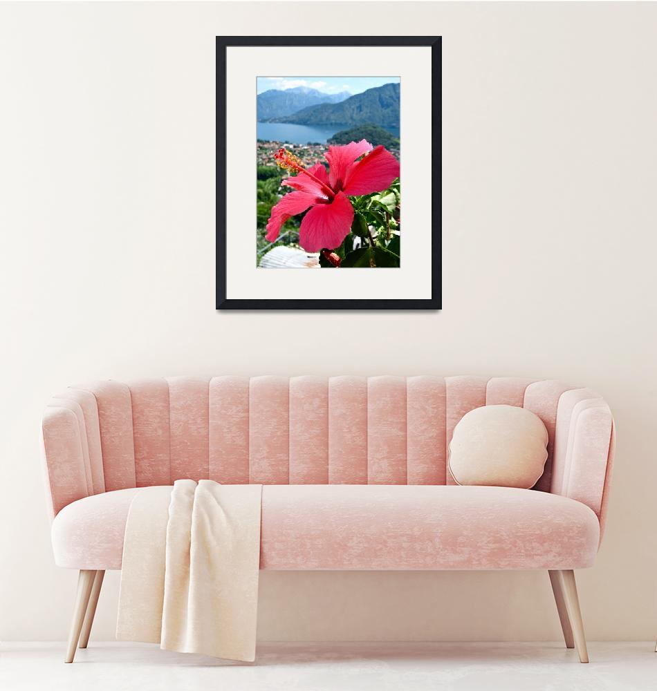 """""""""""Red Bloom in Lake Como""""""""  (2009) by AlexandraZloto"""
