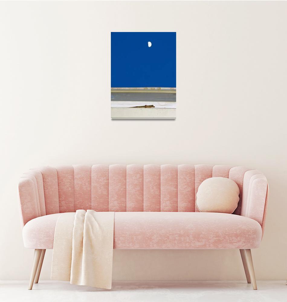 """Gecko and moon"" (2012) by veitschuetz"
