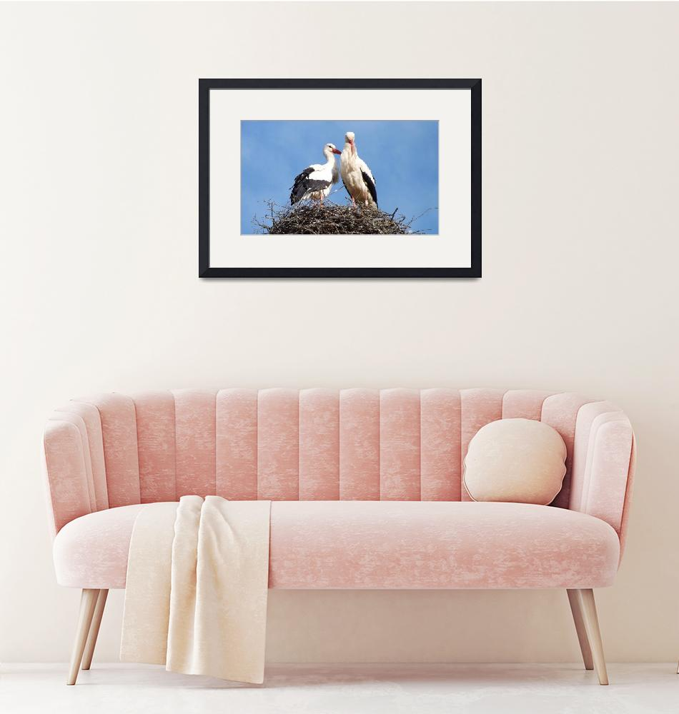 """""""storks""""  (2014) by gallerymay"""