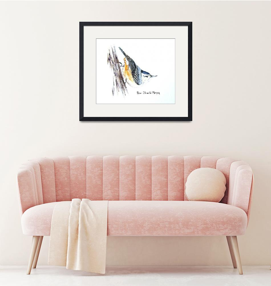 """""""Rose-breasted Nuthatch""""  by kimkloeckerart"""