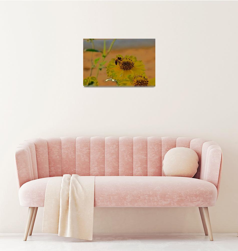 """honey bee on Yellow flower""  (2014) by rottlig"