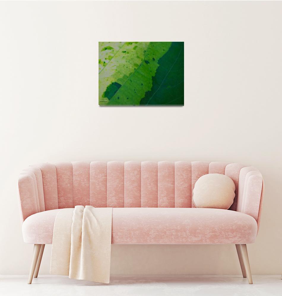 """""""Varies Of Green""""  by esse"""
