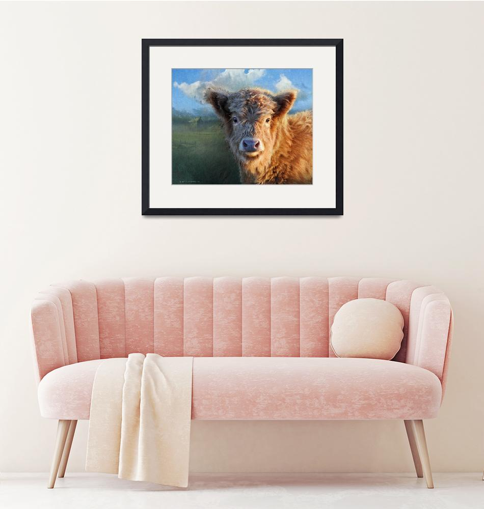 """young highland cow""  (2014) by rchristophervest"