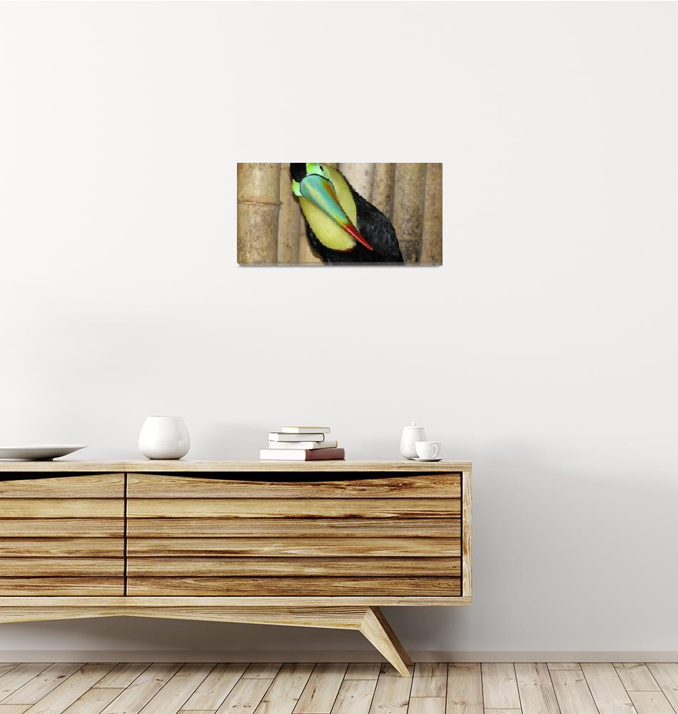 """""""Panama - Toucan""""  (2008) by Kucci"""