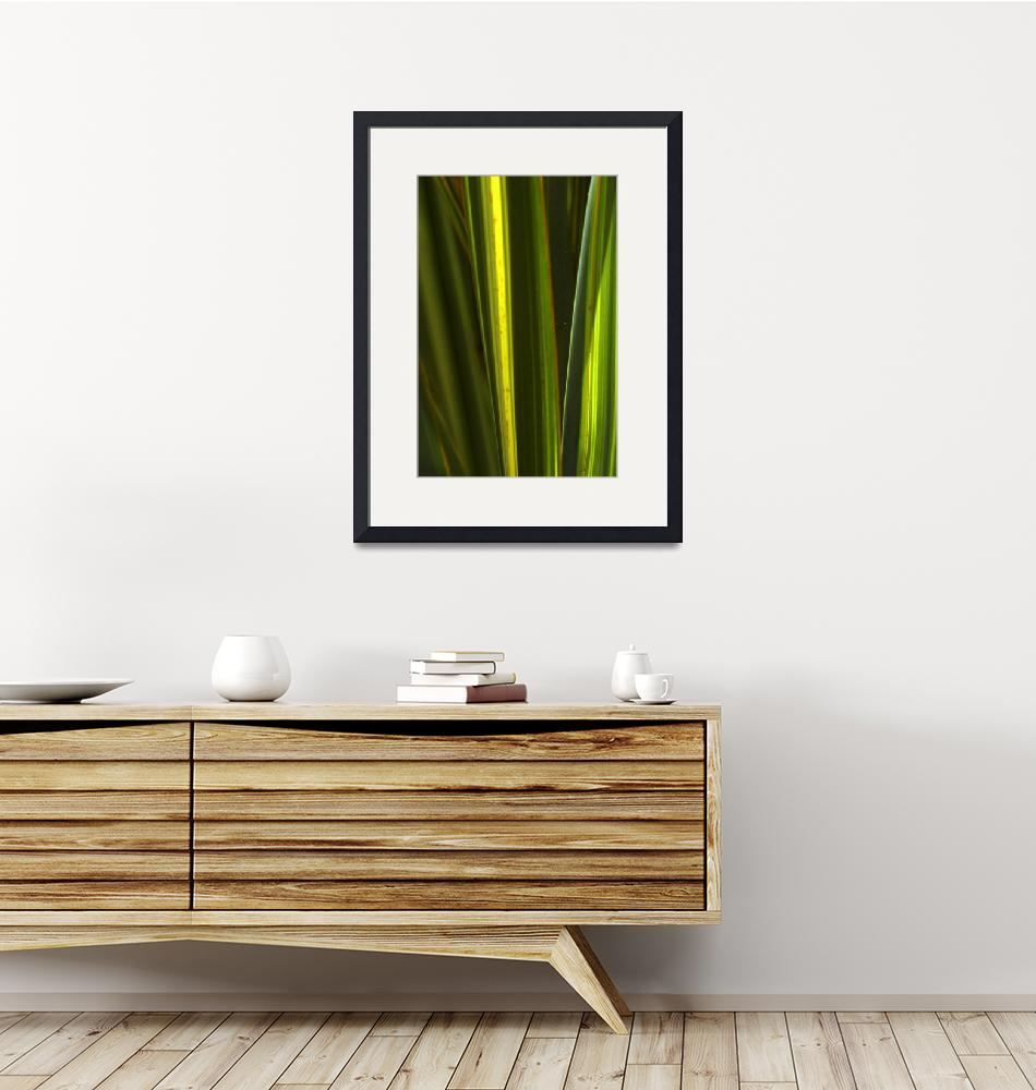 """""""reed abstract""""  by shortwork"""