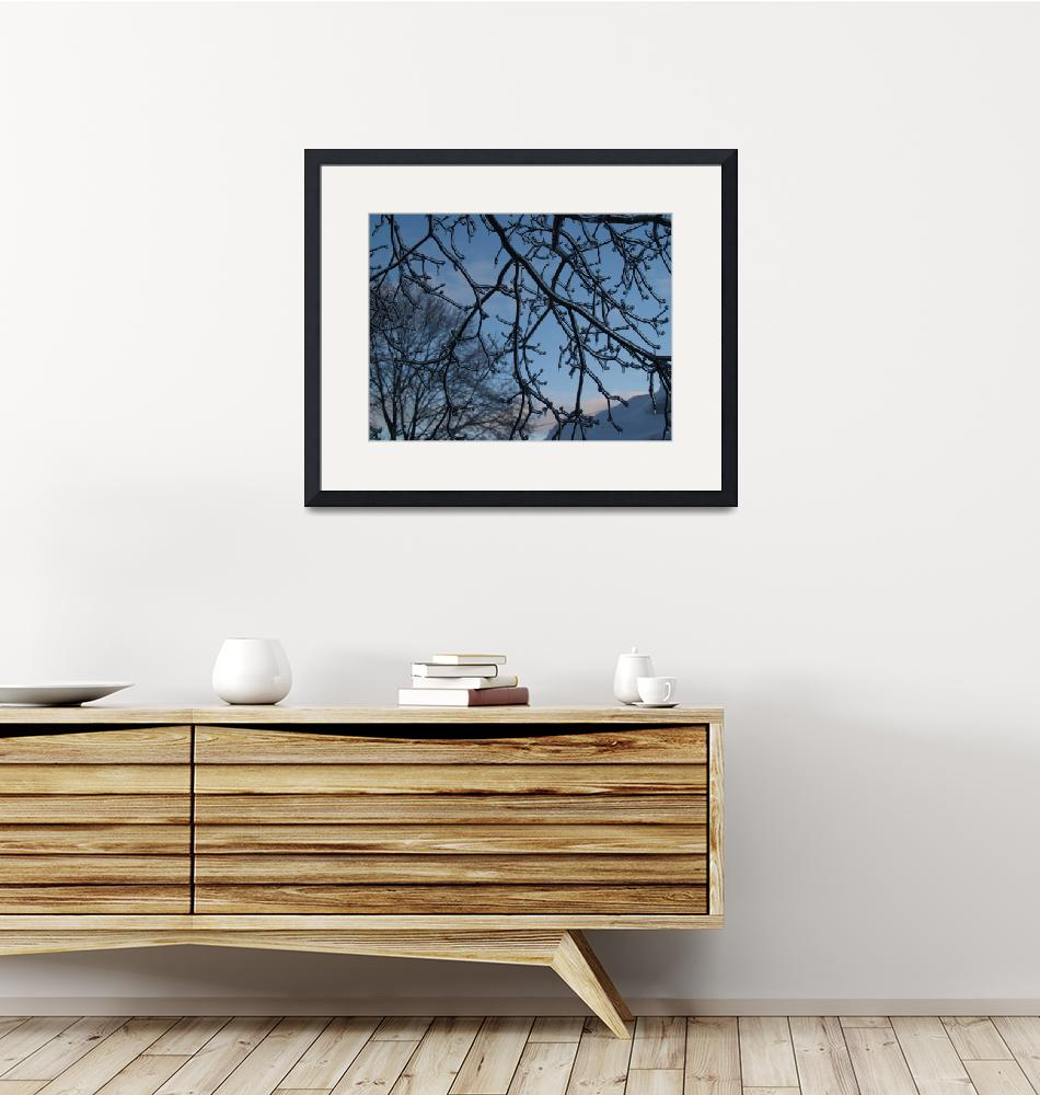 """""""Ice Coated Tree Branches""""  (2011) by MikeMBurkeDesigns"""
