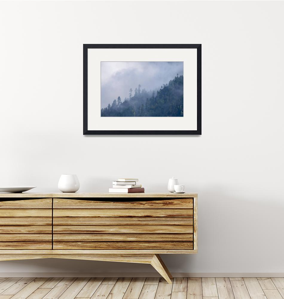 """""""Himalayan Forests and Fog""""  (2017) by SederquistPhotography"""
