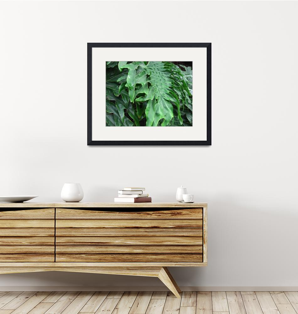 """""""Philodendron Leaves Horizontal""""  by ChristopherInMexico"""