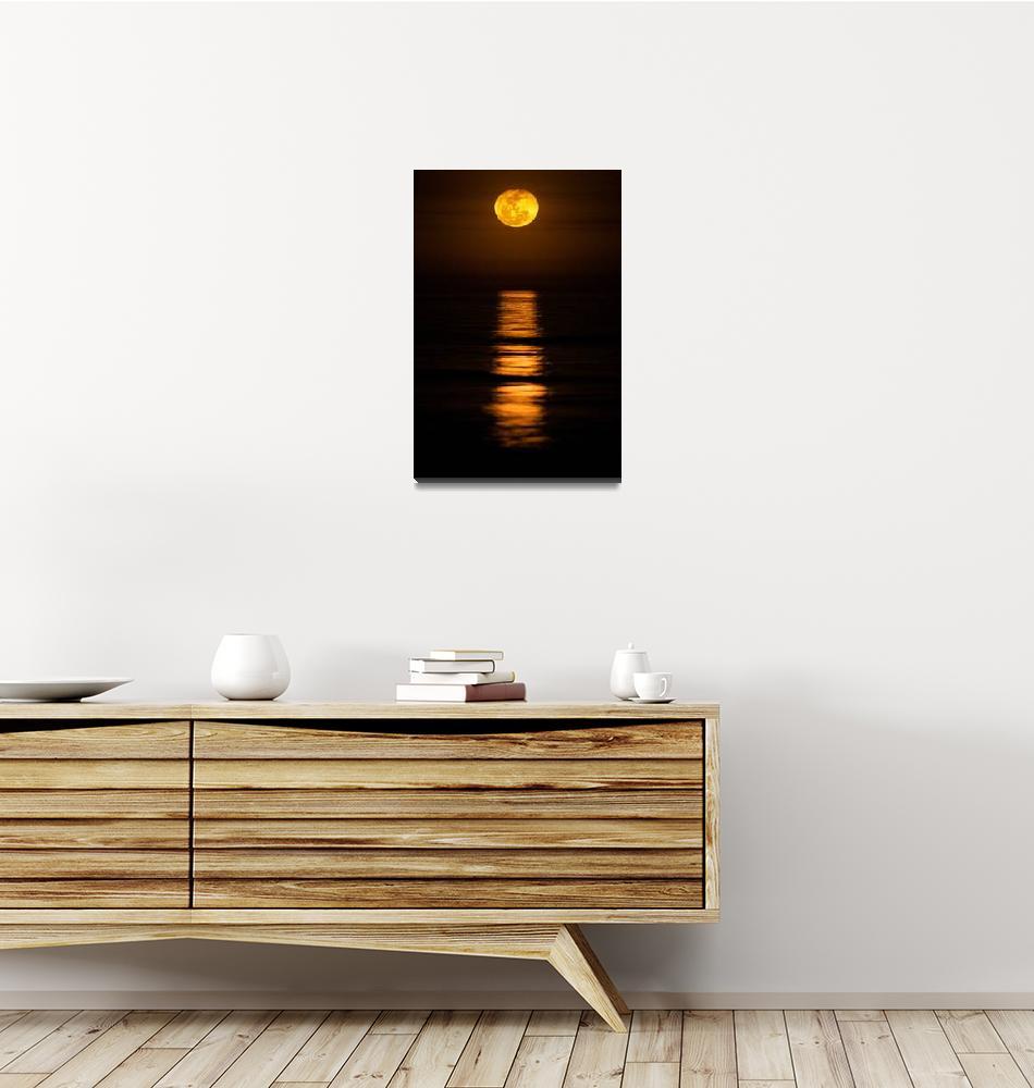 """Carolina Moon by Jim Crotty""  (2011) by jimcrotty"