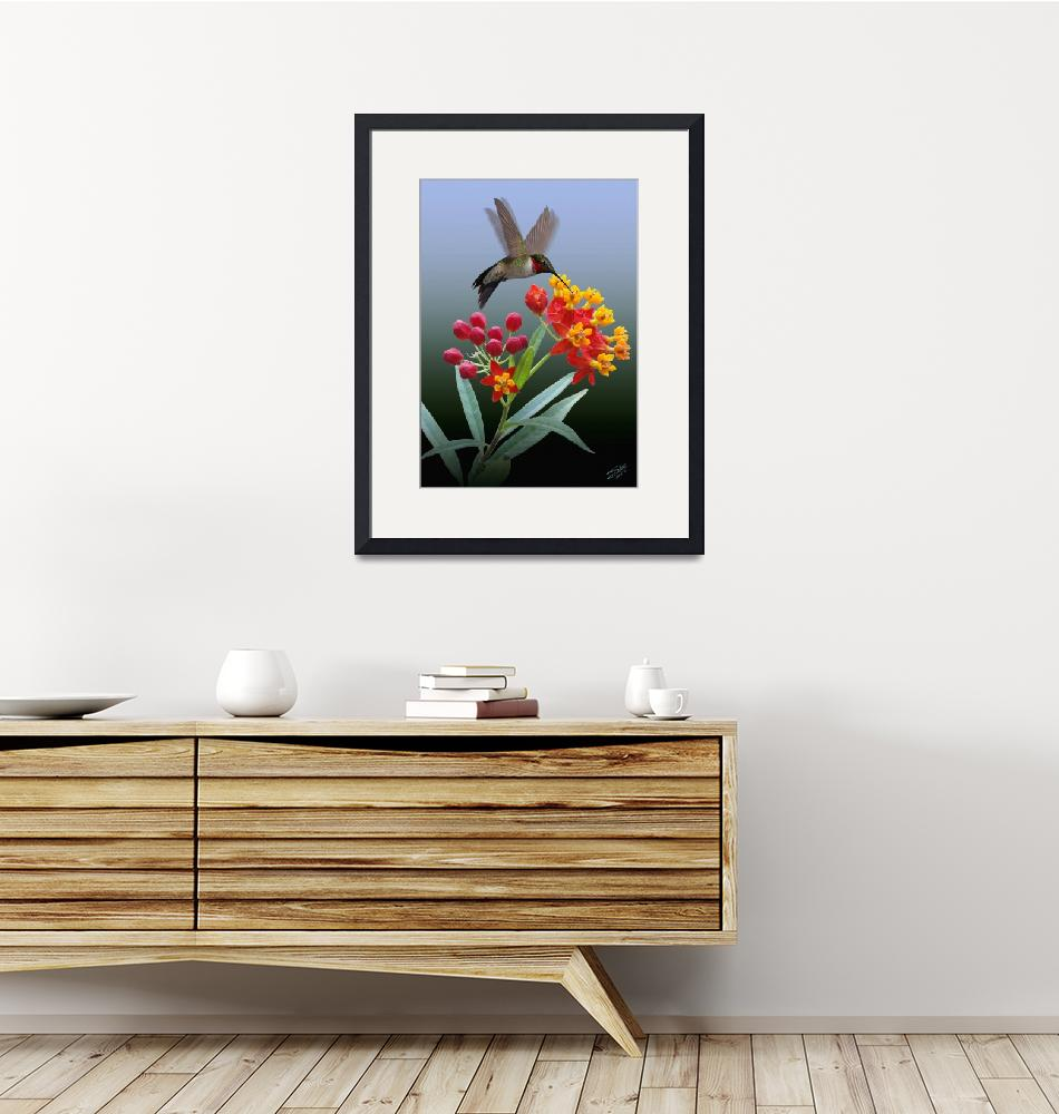 """""""Hummingbird and Mexican Butterfly Weed""""  (2014) by spadecaller"""