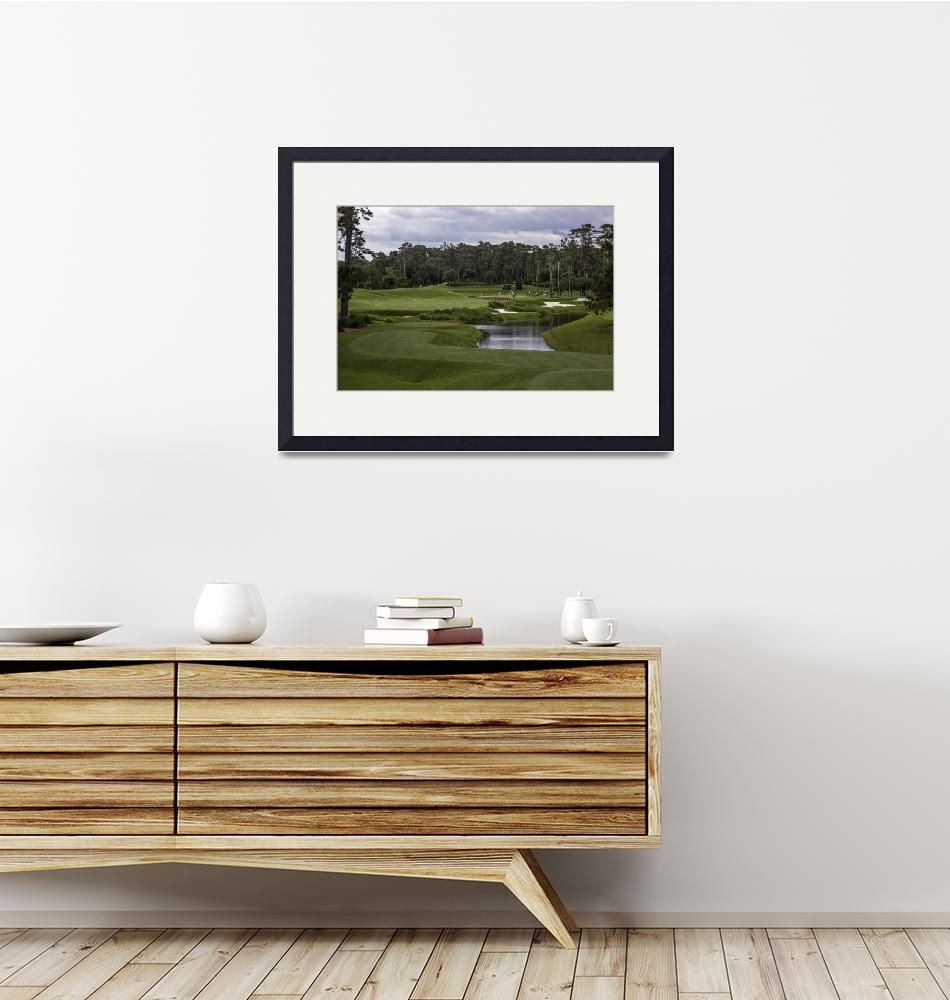 """""""TPC Sawgrass Golf Course Hole 4 Photo 1""""  (2013) by Richimage"""