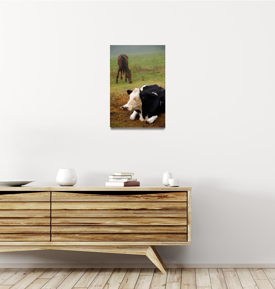 """""""Cow and horse""""  (2011) by gavila"""