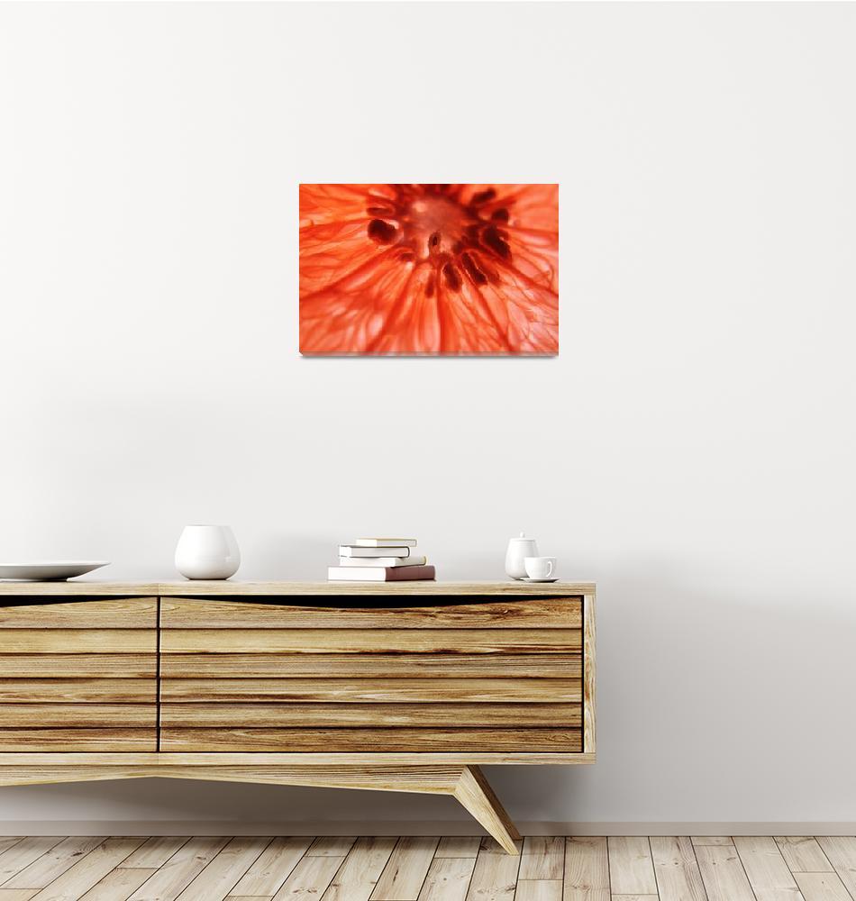 """grapefruit slice""  (2013) by brettshaw"