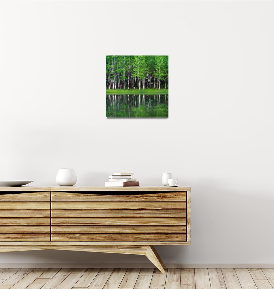 """Lakeshore Panorama (Multi-Panel Left - 1 of 3)""  (2012) by dkocherhans"