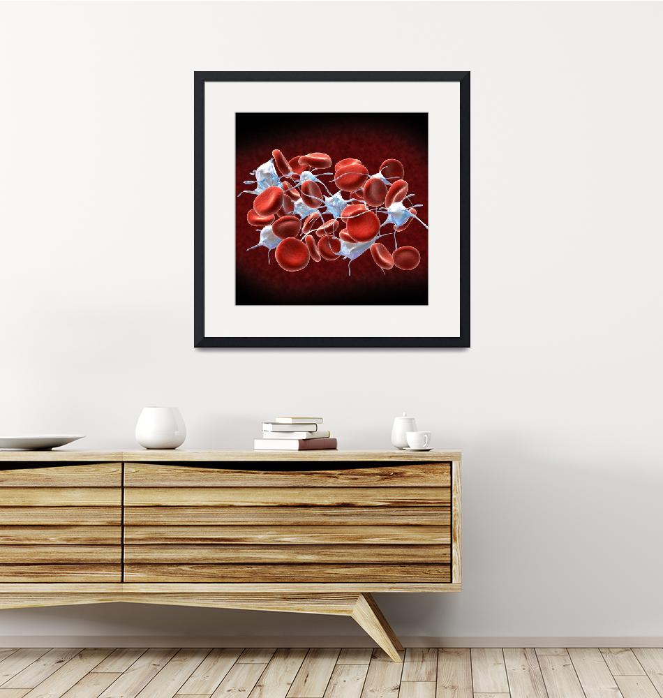 """""""Red blood cells with leukocytes.""""  by stocktrekimages"""