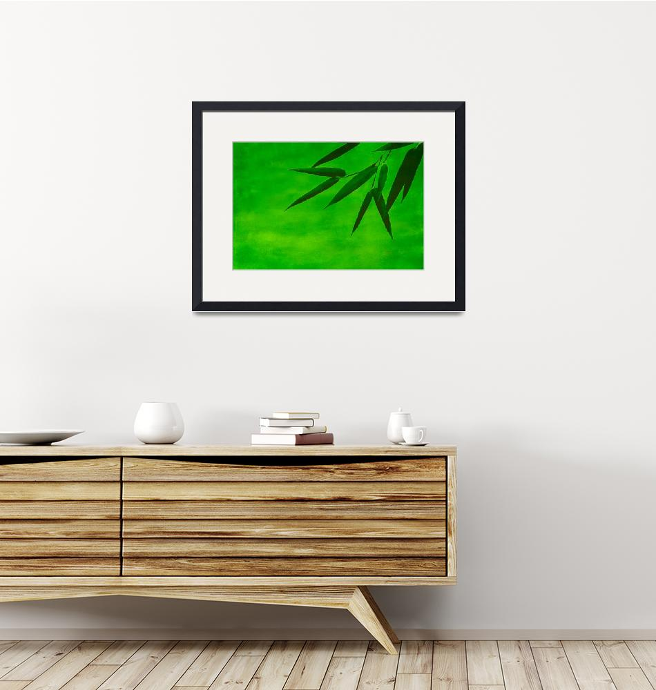 """""""bamboo impression#2""""  (2012) by hannes61"""