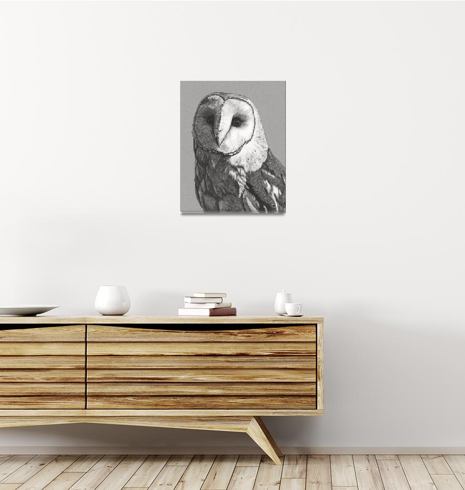 """""""Original ink drawing Barn owl portrait""""  (2018) by yuezeng"""