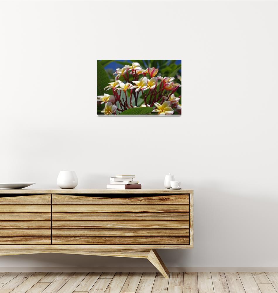 """tropical flowers""  (2012) by erinlanzendorfer"