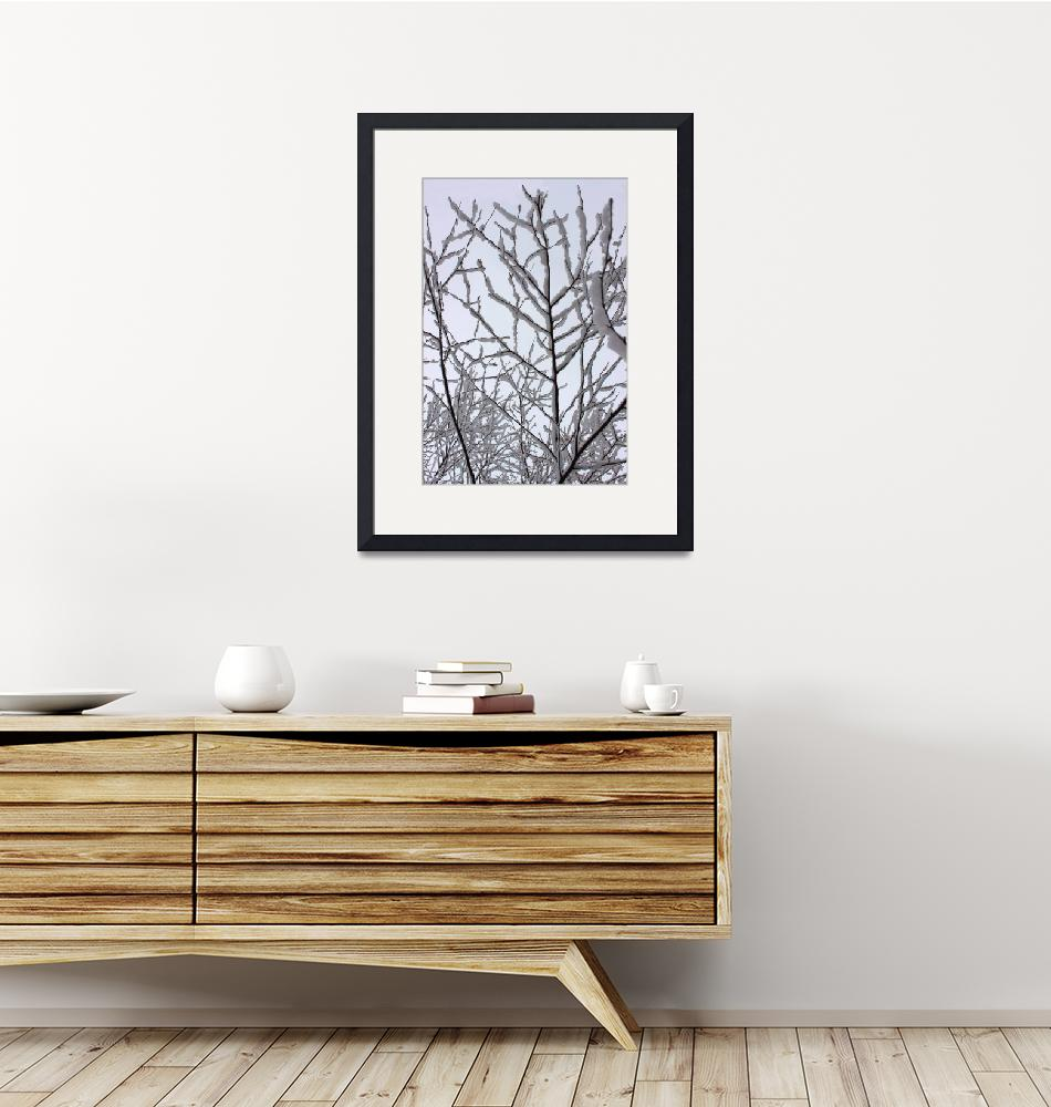 """""""Snow Branches Reaching Up""""  (2014) by KsWorldArt"""