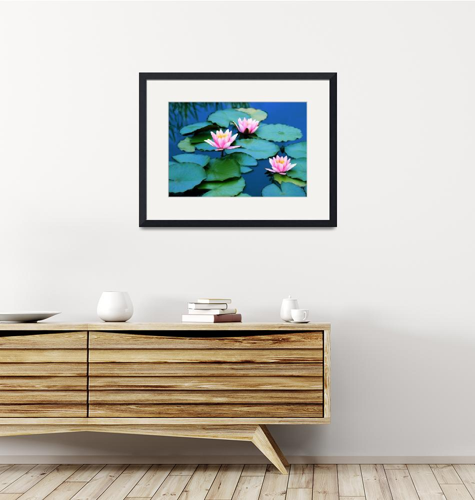 """""""Water Lilies""""  (2017) by JessicaJenney"""