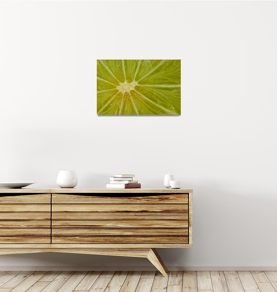 """""""Lime III""""  (2009) by inesmontenegro"""