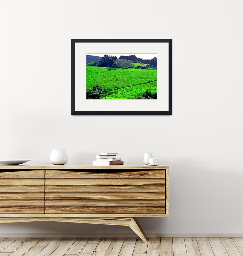 """""""North Auckland Pasture""""  (2005) by skystudioNZ"""