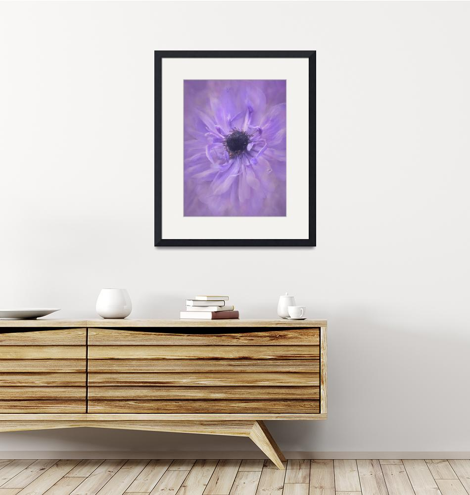 """Purple Flower""  by ARhodesPhoto"