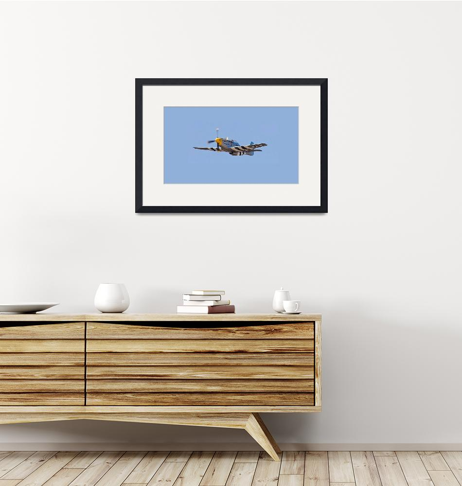 """""""P-51 Mustang""""  (2013) by TheNorthernTerritory"""