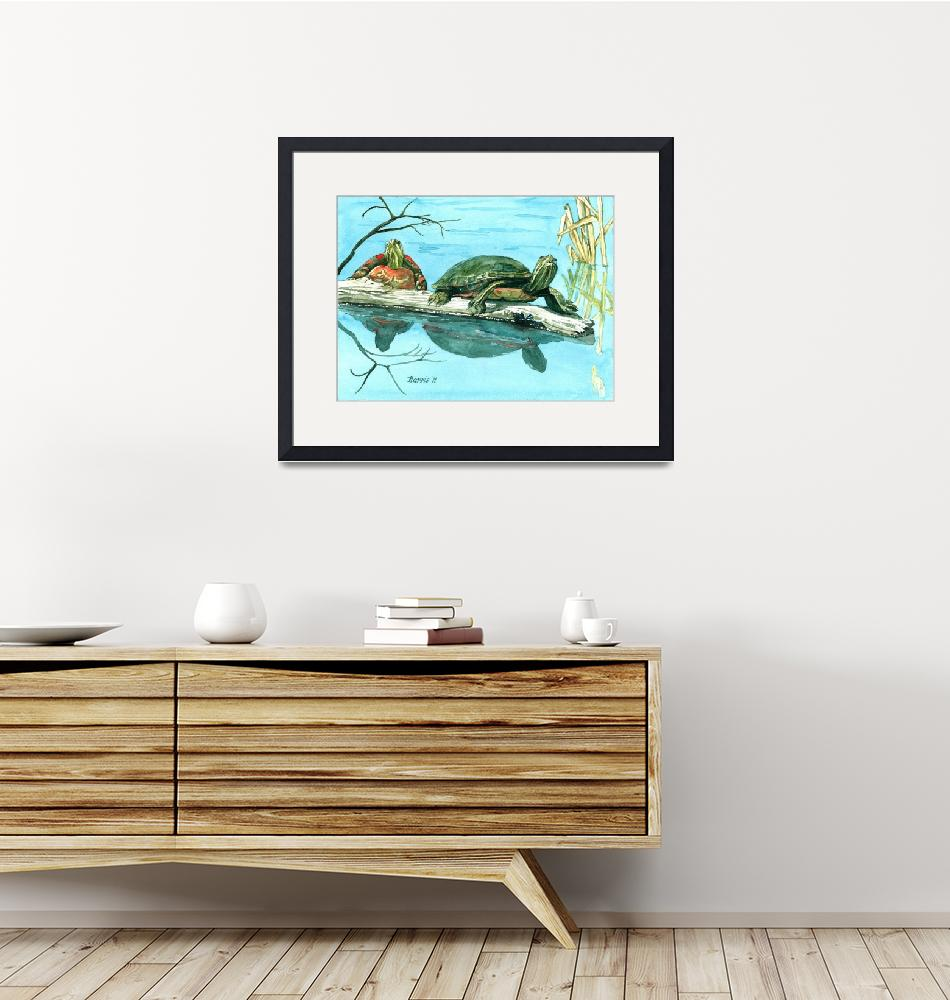 """Turtles""  (2011) by ClotheslineArt"