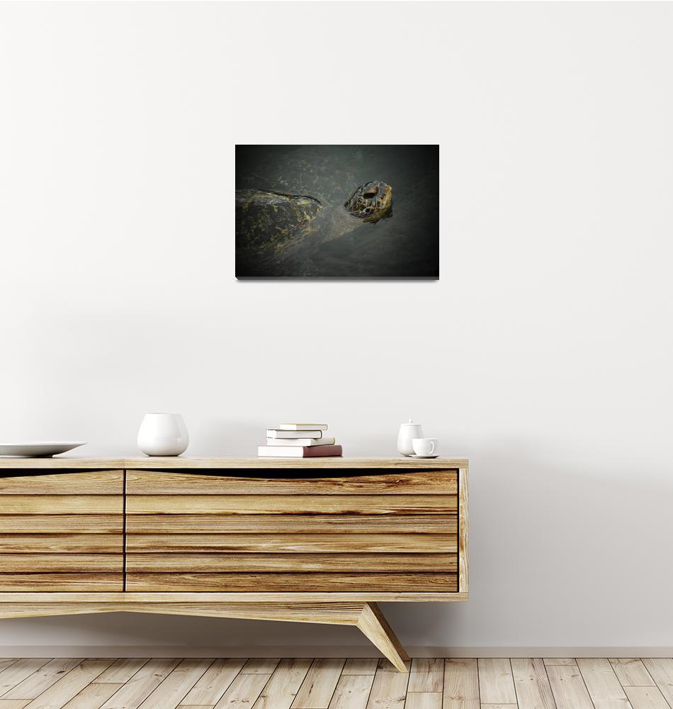 """Sea turtle aka Honu""  (2019) by LavaMama"
