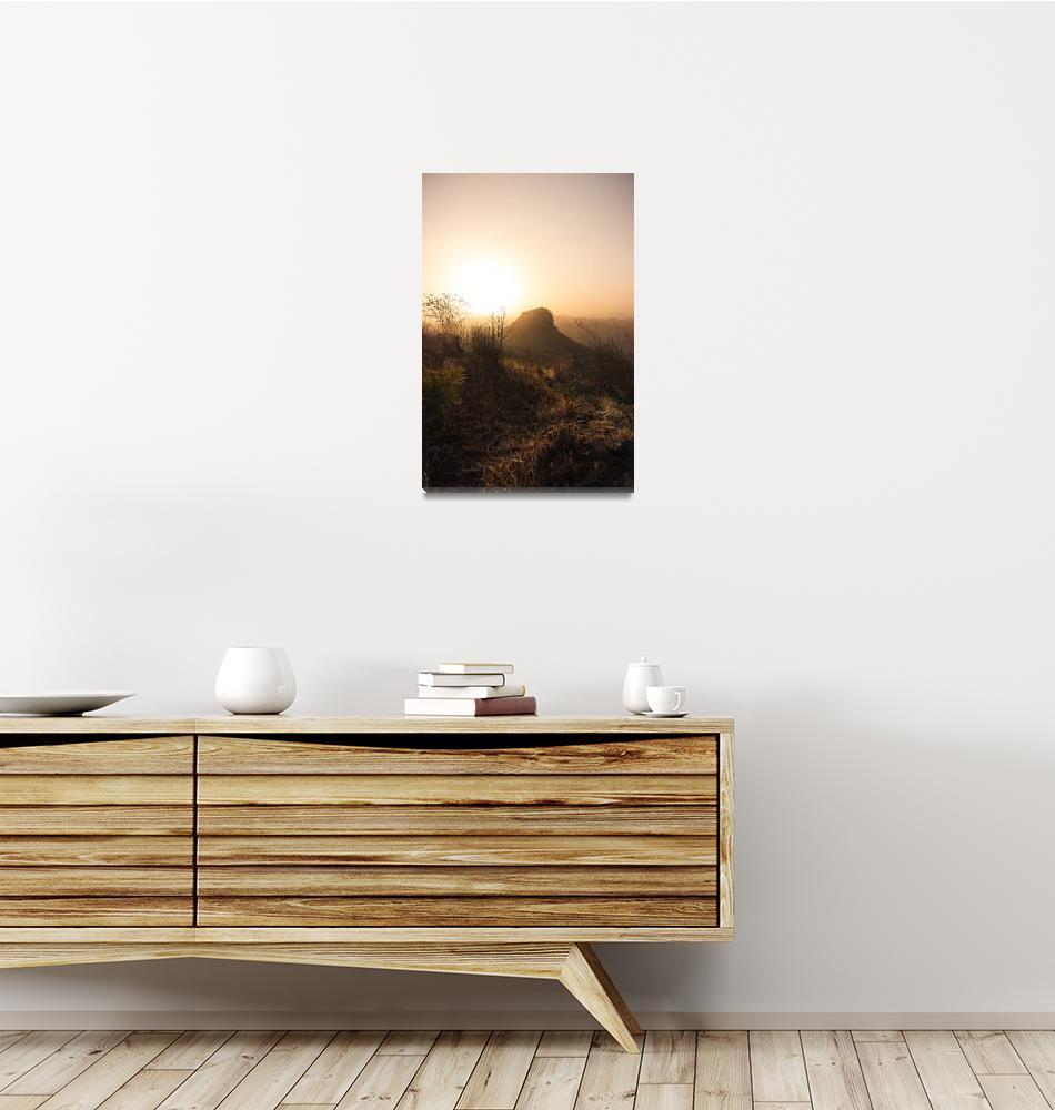 """Golden Rhum""  (2020) by TheTaxiPhotographer"