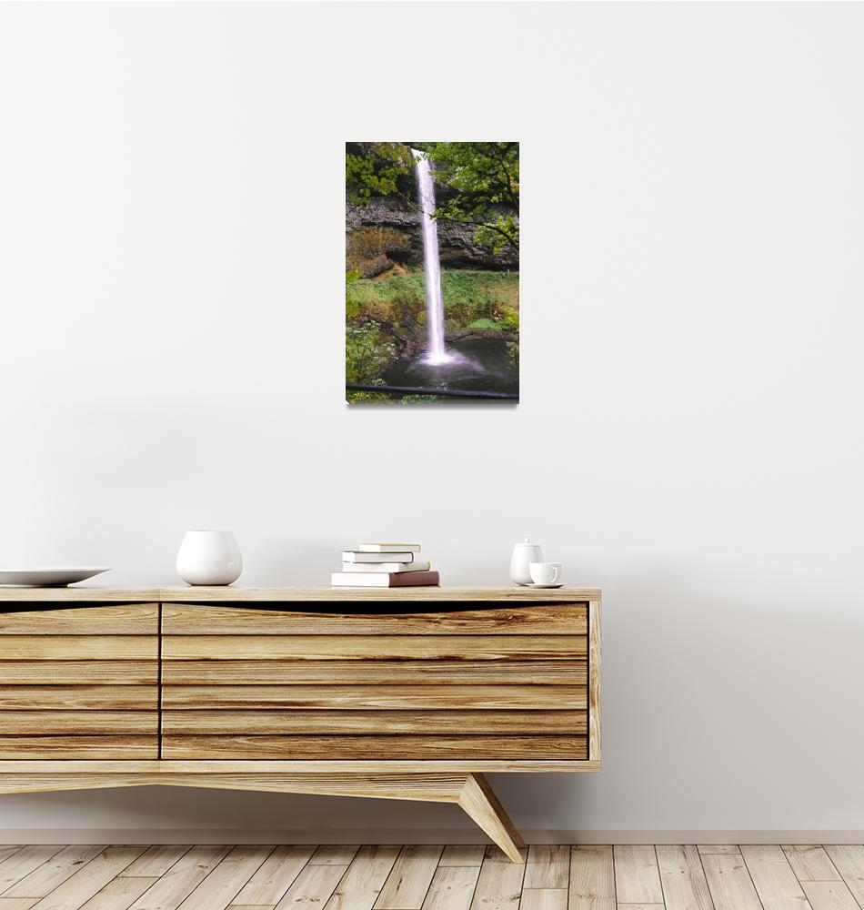 """Silver Falls, Oregon, USA""  by rgtmum"