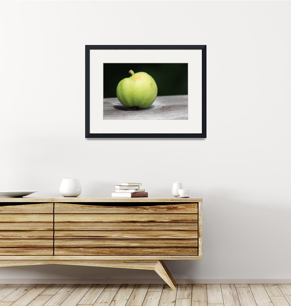 """""""apple..."""" (2010) by Albertphoto"""