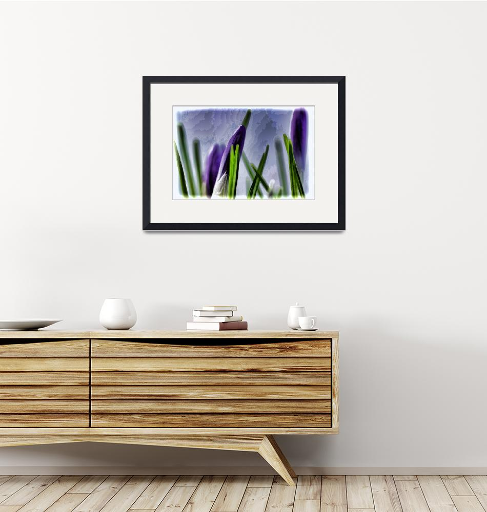 """""""First Crocuses""""  (2014) by boppintheblues"""