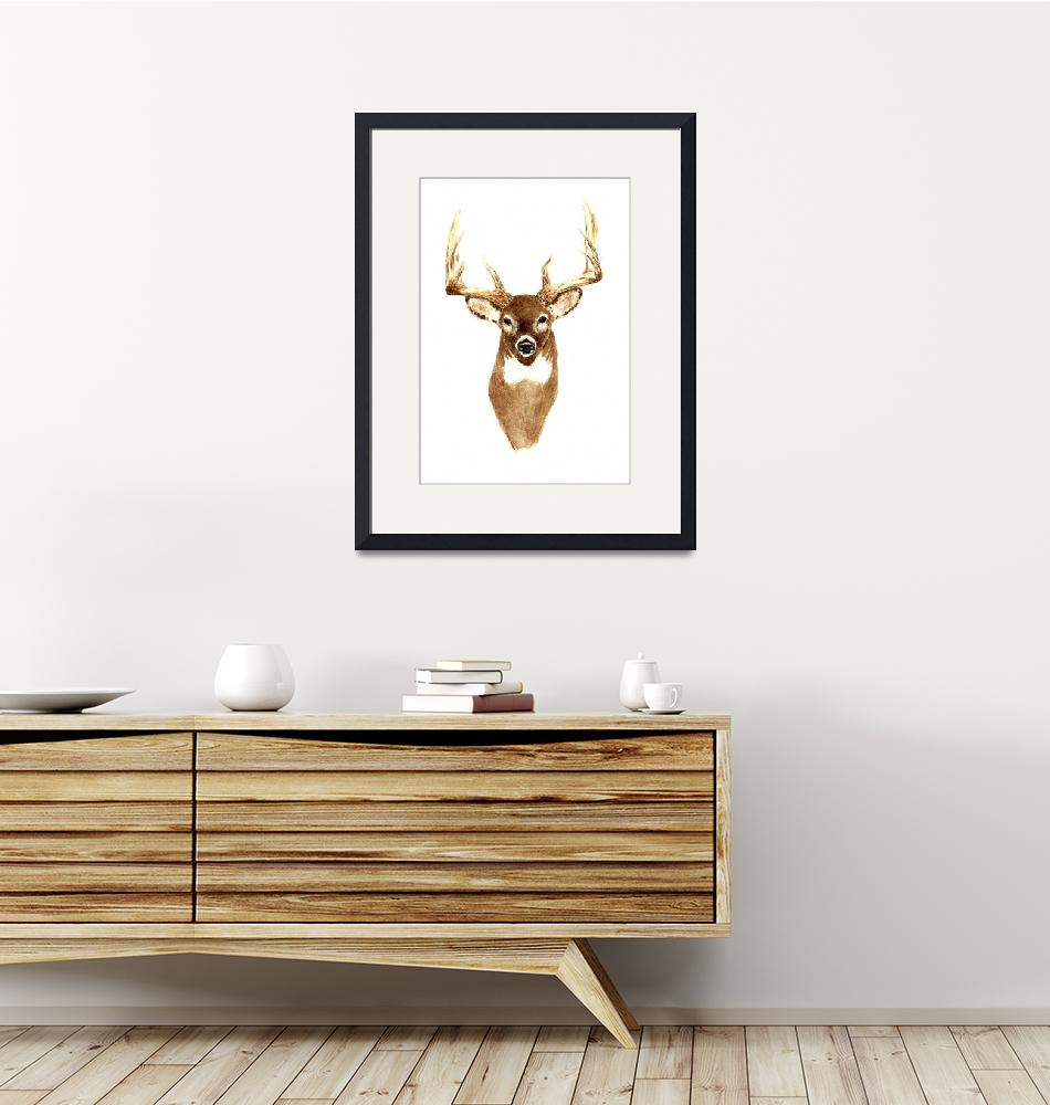 """Deer (Front View)""  (2011) by vigliotti"