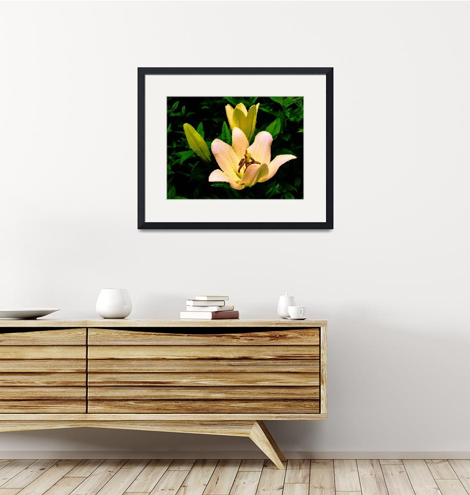 """""""Yellow Lilies""""  (2000) by SandraGouldFord"""