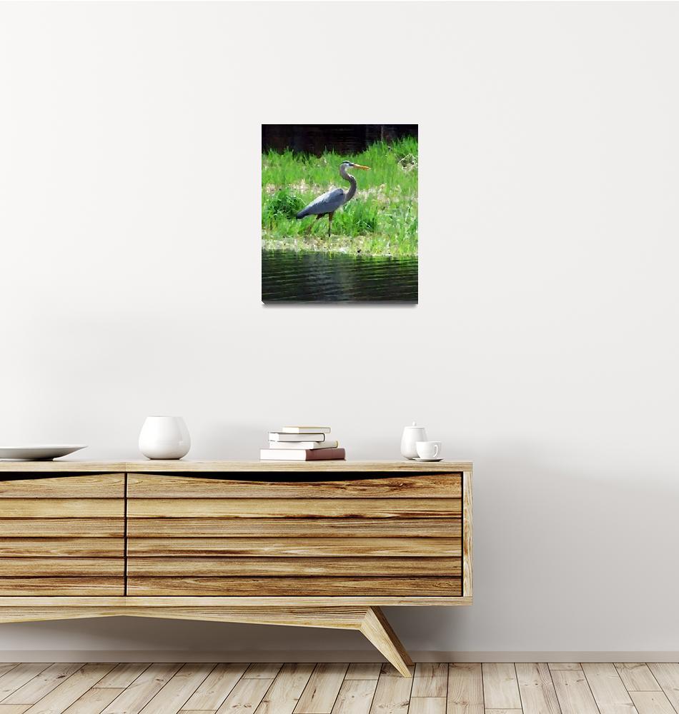 """""""Great Blue Heron""""  (2009) by bavosiphotoart"""