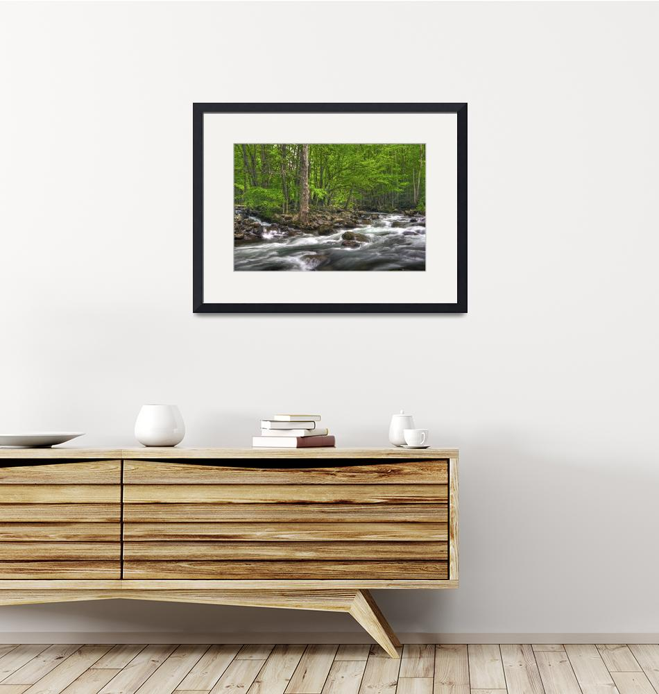 """""""Little Pigeon River in May Great Smoky Mountain NP""""  by jimcrotty"""