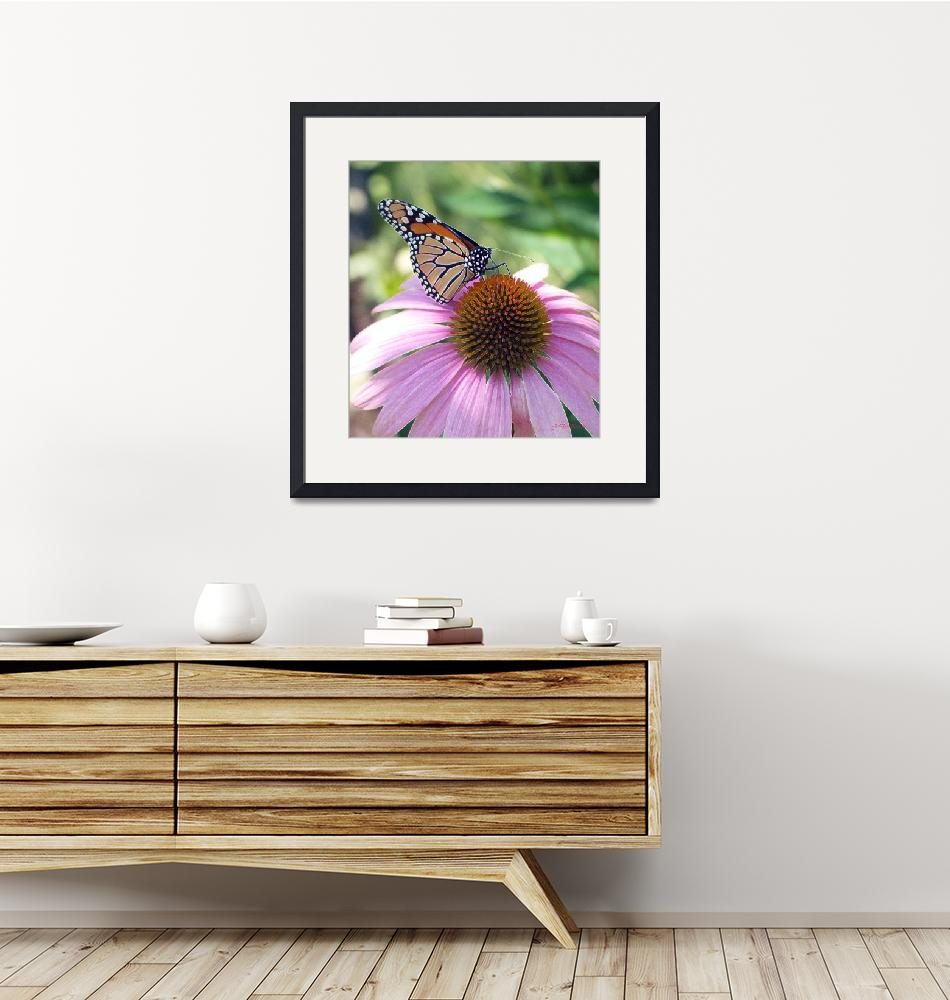 """""""BUTTERFLY MOMENT""""  by NaturePlusStudios"""