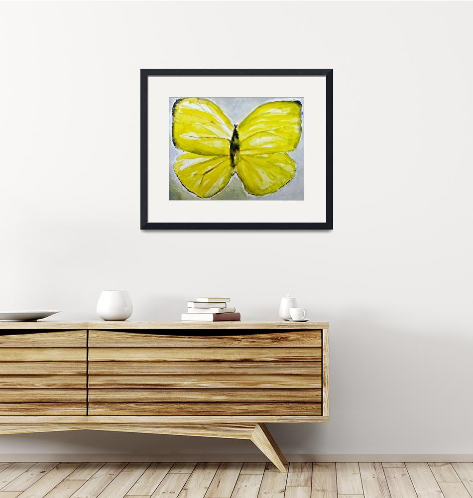 """Yellow Buttercup Butterfly""  (2011) by nataliecardon"