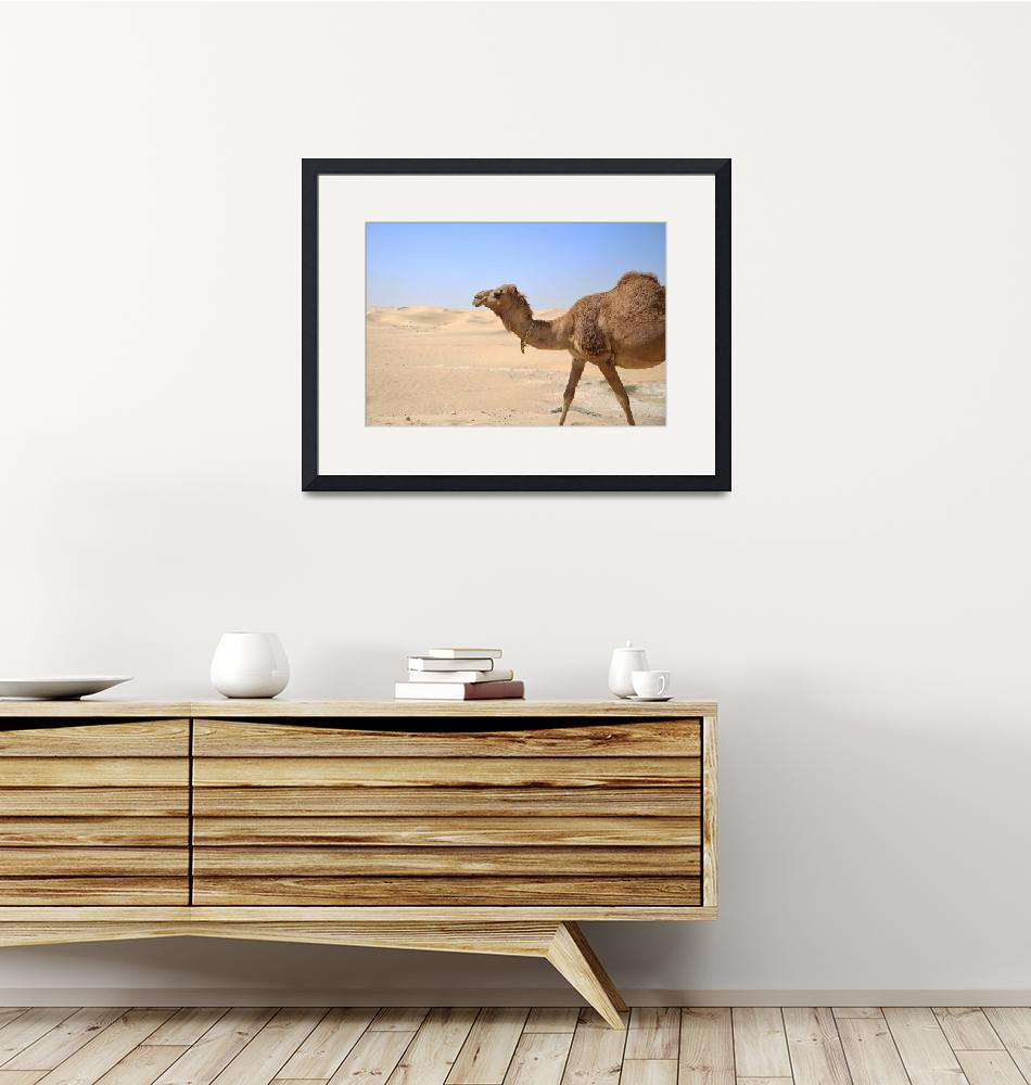 """""""Camel""""  (2015) by omarion"""