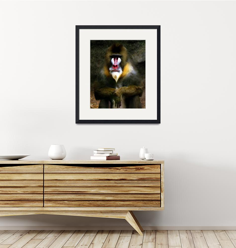 """Mandrill Baboon""  (1992) by PadgettGallery"