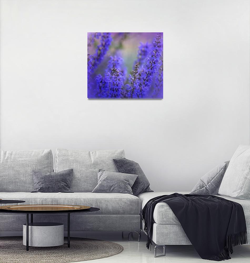 """lavender dream -3-""  (2017) by issabild"