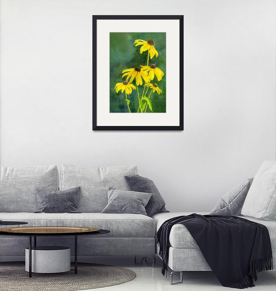 """""""Black Eyed Susans with Dark Background""""  (2013) by Pacific-NW-Watercolors"""