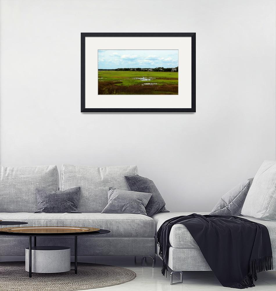 """Mt Pleasant Waterfront Marsh""  (2013) by DayLove"
