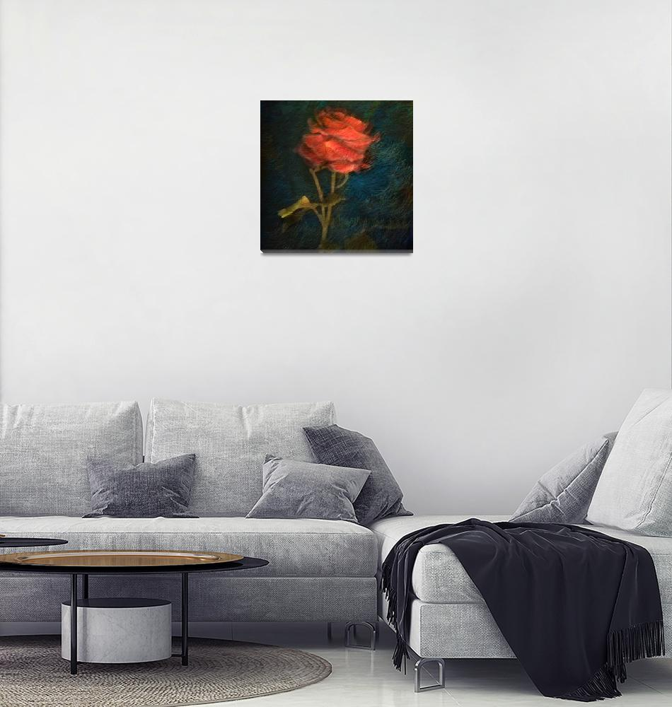 """""""Rose""""  (2016) by cattanphoto"""