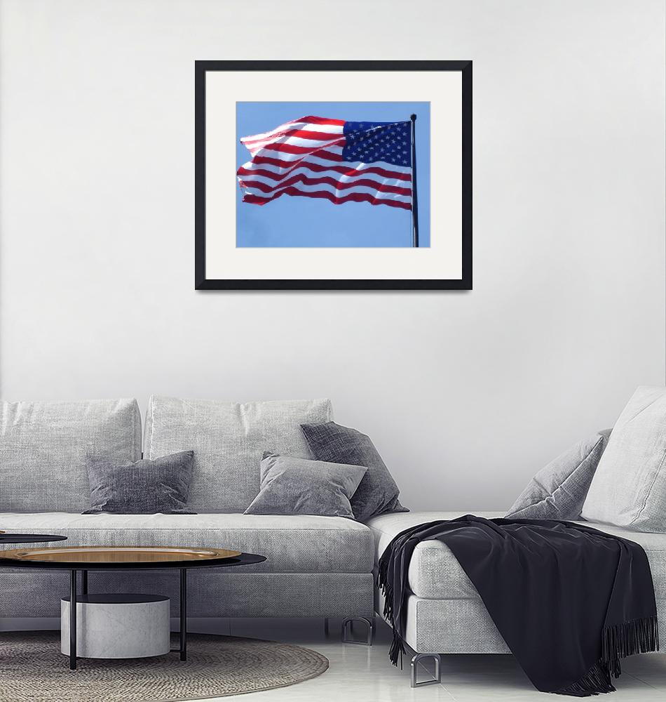 """American Flag at Washington DC""  (2008) by whateverdesign"