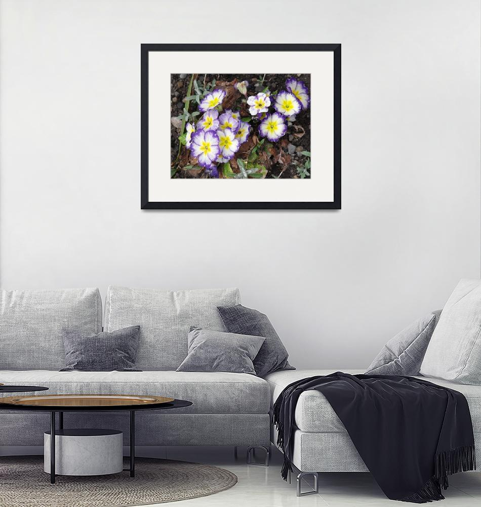 """""""Flowers.""""  (2012) by Natureseyes"""
